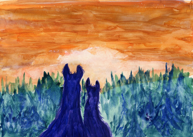 Llamas At Sunset - #68