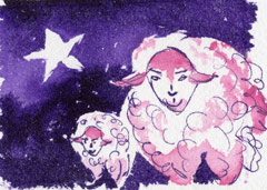 Star Sheep