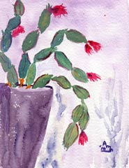 Holiday Cactus #2